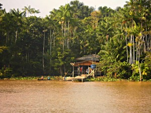 Amazonas Boat Travel
