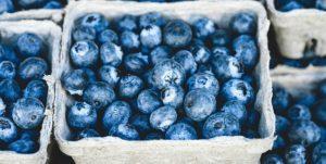 Rohkost, rohvegan, vitalstoffreich: Blaubeeren