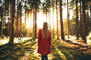 Schattenarbeit: Wieder ganz und heil werden