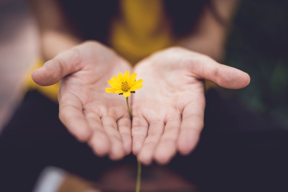 Intuition: Schule deine Wahrnehmung